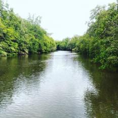 Dari Zaman Batu hingga Zaman Digital, Sungai adalah Urat Nadi Kehidupan