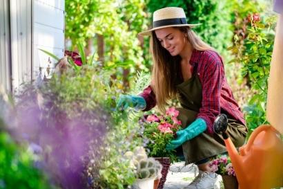 Bertanam di Pekarangan Rumah, Minim Modal Hasil Lumayan