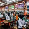 Pentingnya Tata Letak Pabrik yang Efisien untuk Meningkatkan Produktivitas serta Keuntungan