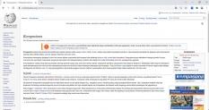 Perlu Diingat, Wikipedia Tidak Menjamin Keabsahan Isi Artikelnya!