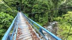 Menuju Moa, Melintasi Hutan Tua dan Sungai-sungai nan Jernih