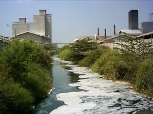 Pencemaran Limbah di Sungai Berdampak pada Kematian