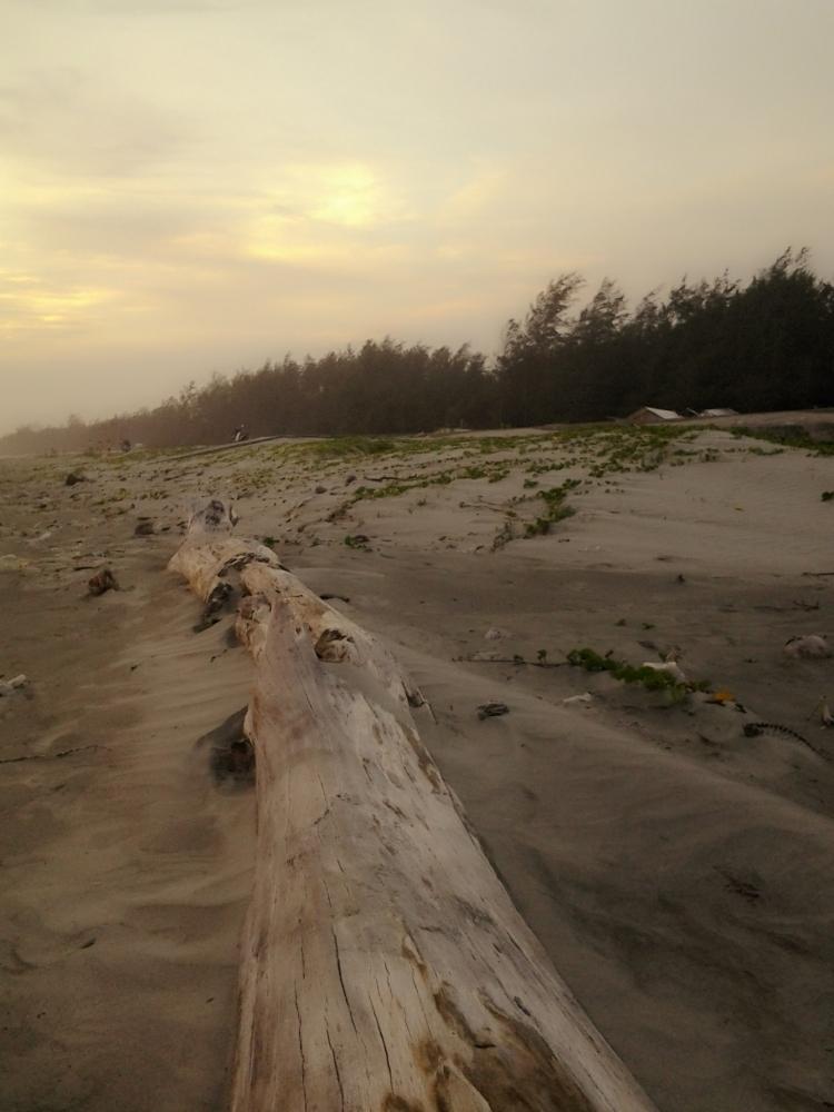 Pesona Pantai Panjang Bengkulu