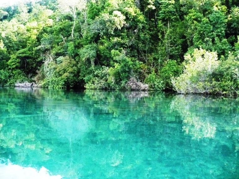 Danau Towuti, Berkaca di Air Pun Bisa!