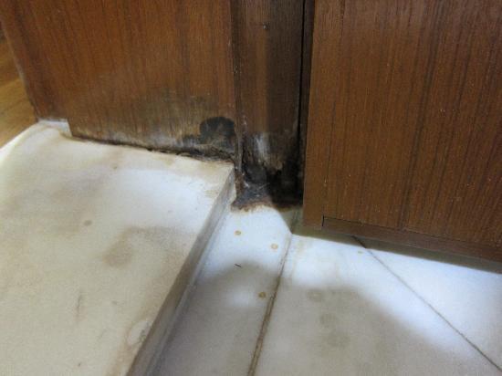 Cara Agar Pintu Kamar Mandi Bagian Bawah Tidak Cepat Rusak