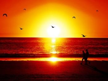 52 lukisan pemandangan tepi pantai pada waktu senja HD Terbaik
