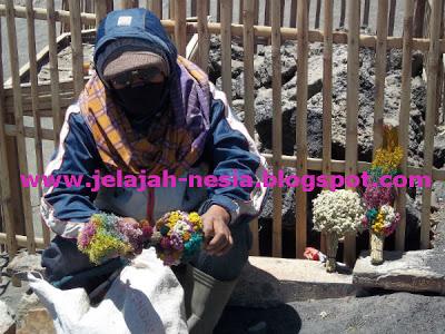 Penjual Bunga Edelweis di Gunung Bromo