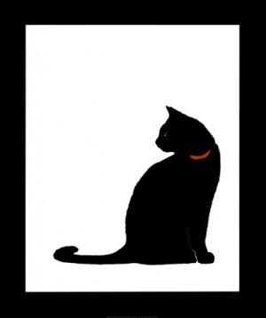 Nabrak Kucing Bawa Sial, Antara Mitos dan Logika