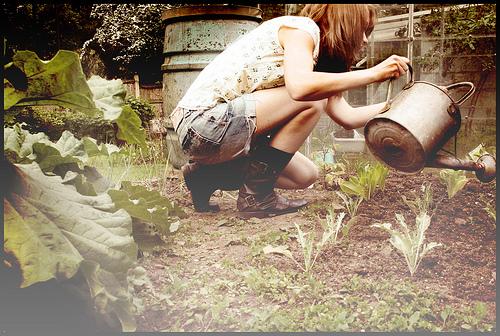 Membuat Kompos dan Keranjang Takakura Sendiri