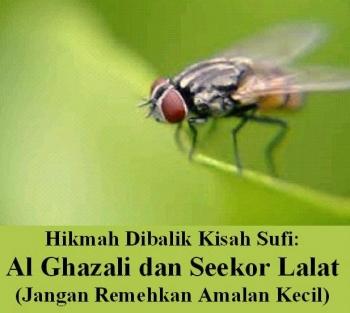 Hikmah Dibalik Kisah Sufi Imam Al Ghazali Dan Seekor Lalat