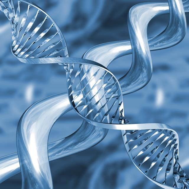 Karo Bukan Batak: Test Genetik Siapa Takut.