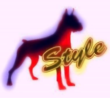 Doggie Style Vs Momon Style