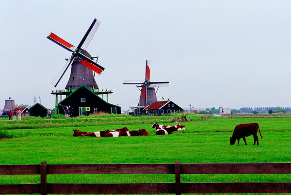 Membuat Visa Schengen ke Belanda
