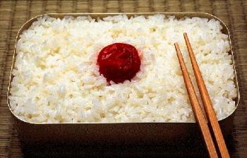 Uniknya Bento Bekal Makan Ala Jepang Kompasiana Com