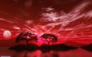 Signifikasi dan Pokok Pikiran Filsafat Abad ke-20